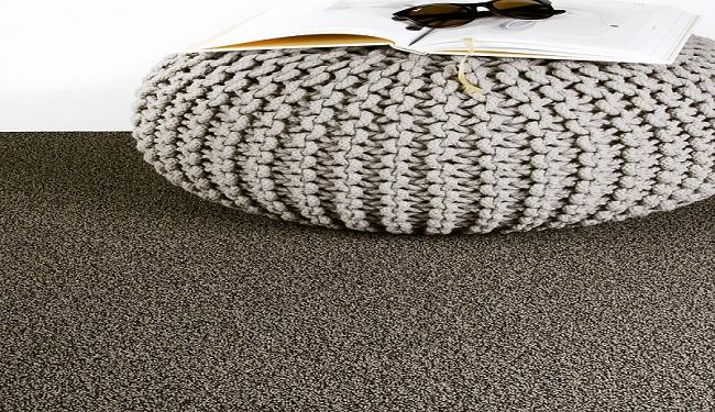WYCO, für sämtliche Bodenbeläge, wie Parkett, Teppich, PVC